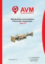 Manipulateur linéaire pneumatique Type 37